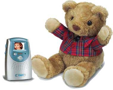 BearCamera.jpg