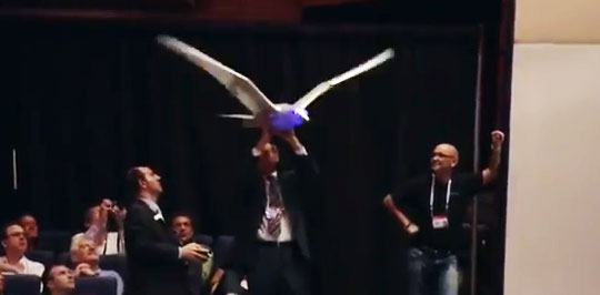 Robot That Flies Like a Bird