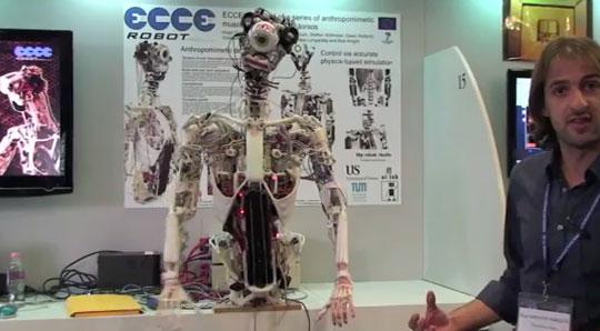 Anatomically Correct Humanoid Robot