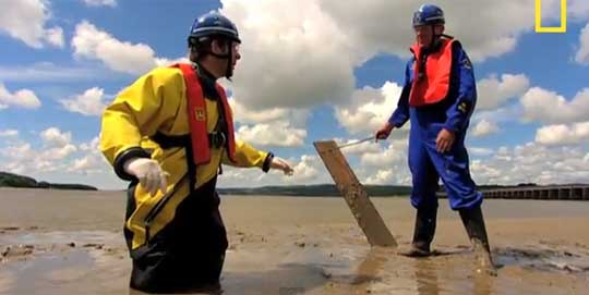 Can You Survive Quicksand?