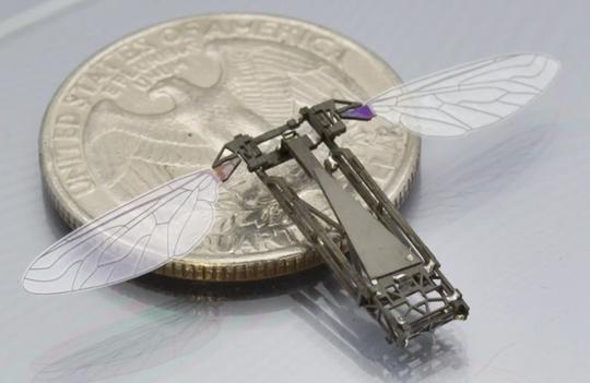 RoboBee Buzzes Into History As Tiny Bee Drone