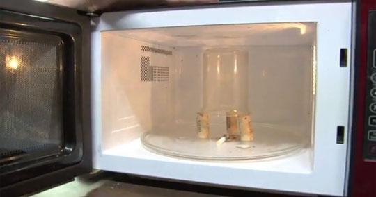 Microwave Plasma Balls Experiment
