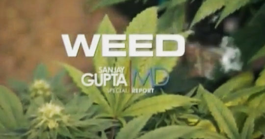 WEED: A Dr. Sanjay Gupta Special - Documentary