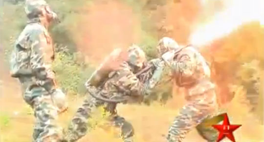 Chinese Army Sent Flamethrowers to Destroy Huge Wasp Nest