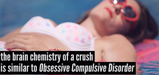 The Science of Having A Crush