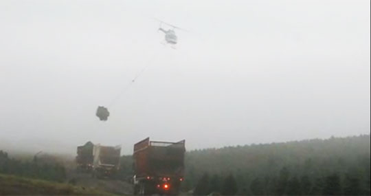 Christmas Tree Harvesting with Helicopter is Surprisingly Quick