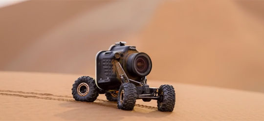 RC Car with Camera Meets a Group of Lions
