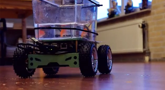 Fish Drives His Own Aquarium on Wheels