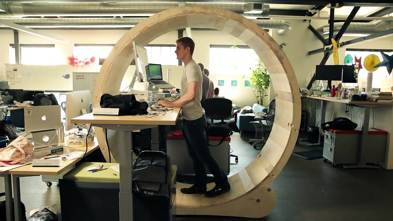 Giant Hamster Wheel Standing Desk
