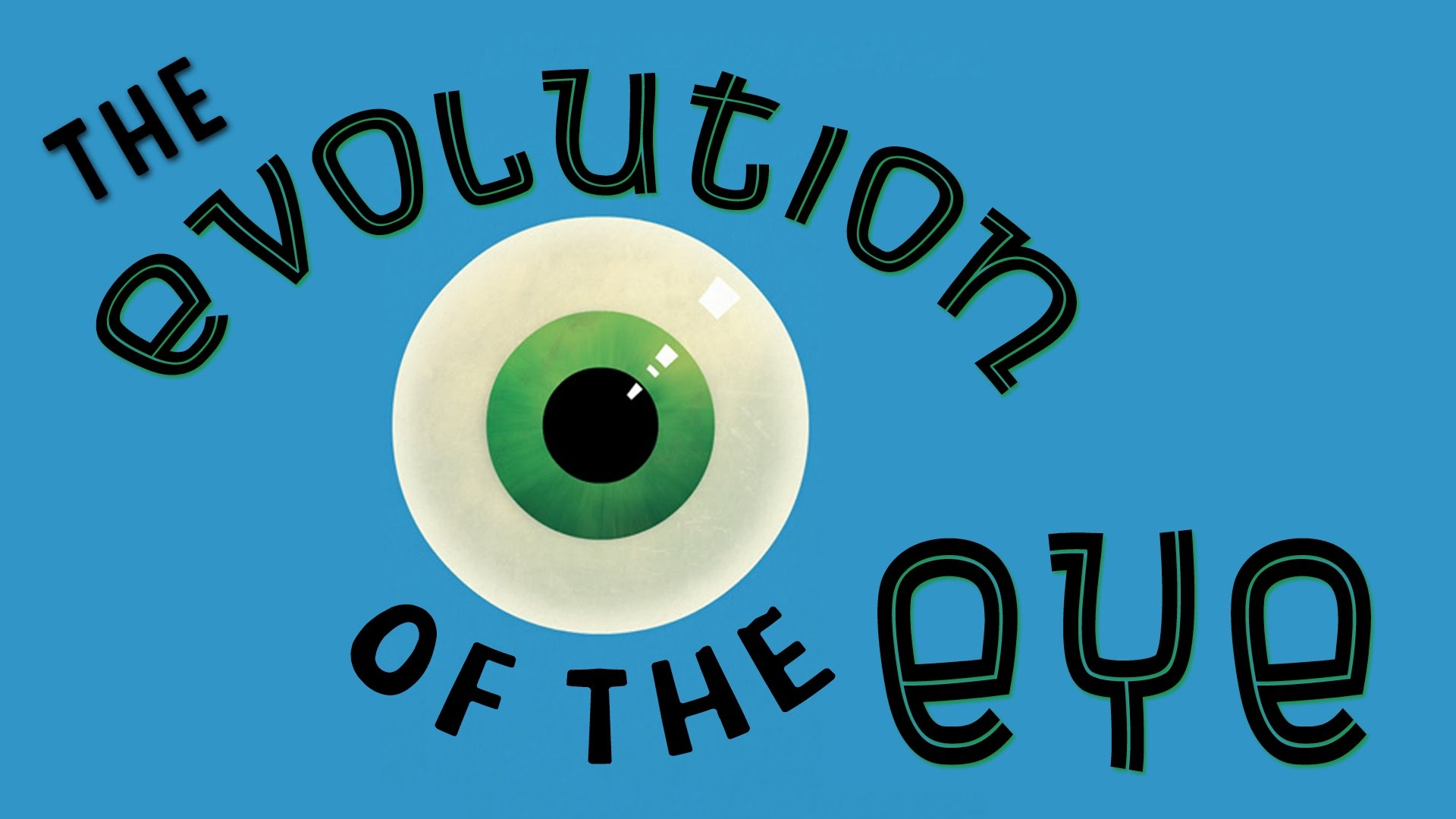 The Evolution of the Human Eye