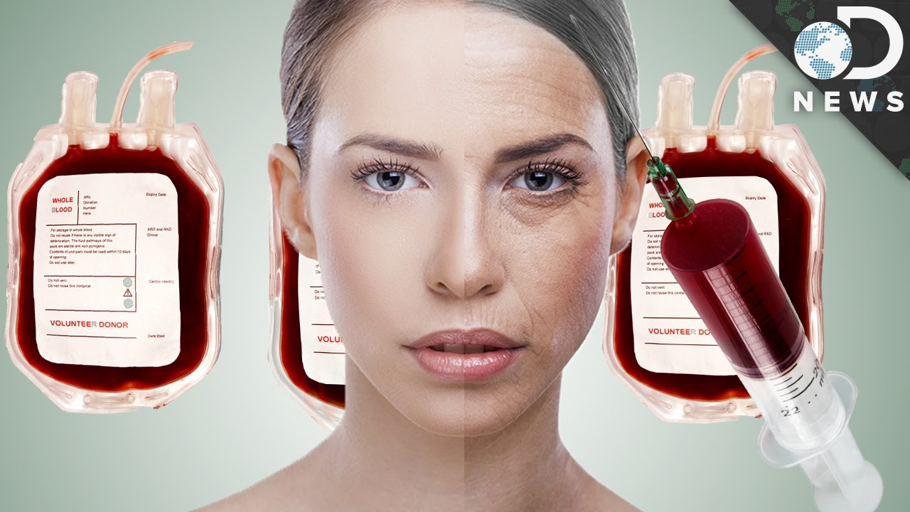 Is Young Blood The Secret To Eternal Youth?