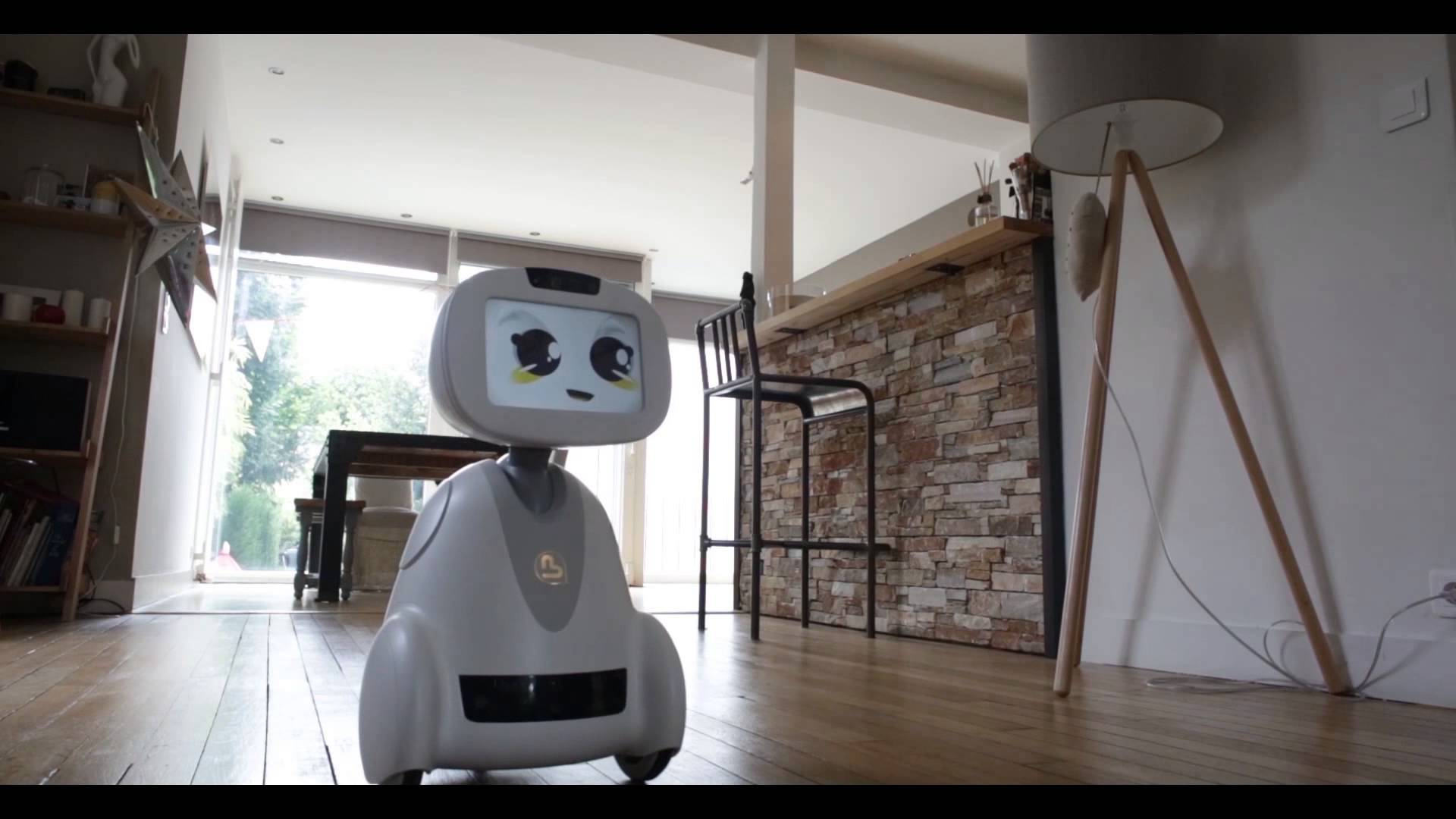BUDDY: Your Family's Companion Robot