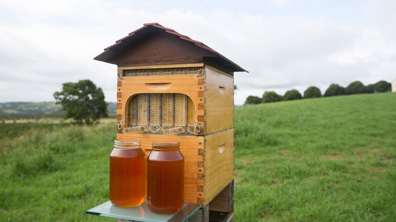 These guys created a brilliant, non-invasive way to harvest Honey from Bee hives