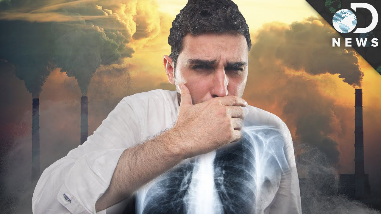 This Is What Pollution Does To Your Body