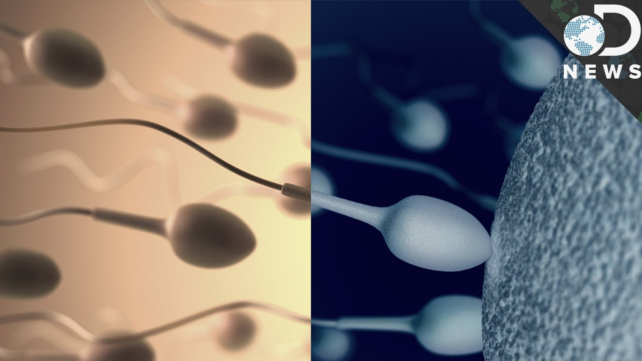 This Device Could Turn Off Your Sperm
