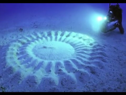 8 Most Mind-Blowing Things That Can Be Found Underwater