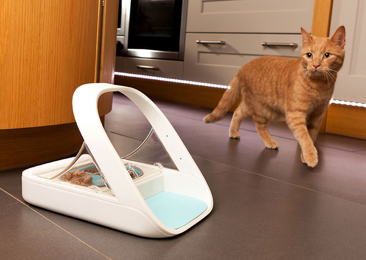 pet-identity-scan-pet-feeder