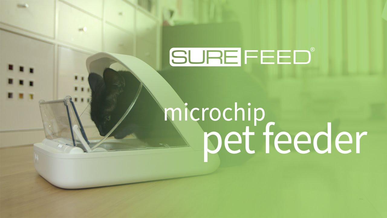 This Pet Feeder Scans the Identity of Your Pet to Feed the Correct Pet