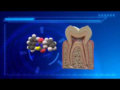 Researchers find that Alzheimer's drug can help teeth regenerate