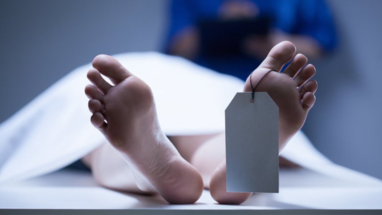 US Company to Start Trials 'Reawakening the Dead'