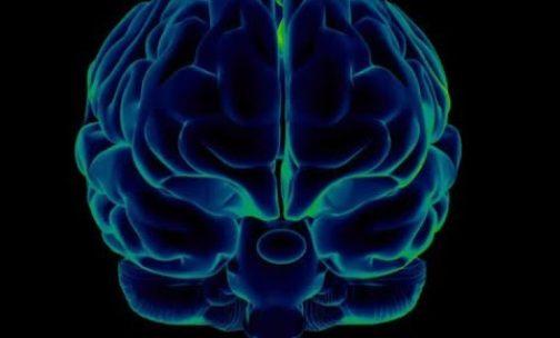 Your brain has an autopilot mode