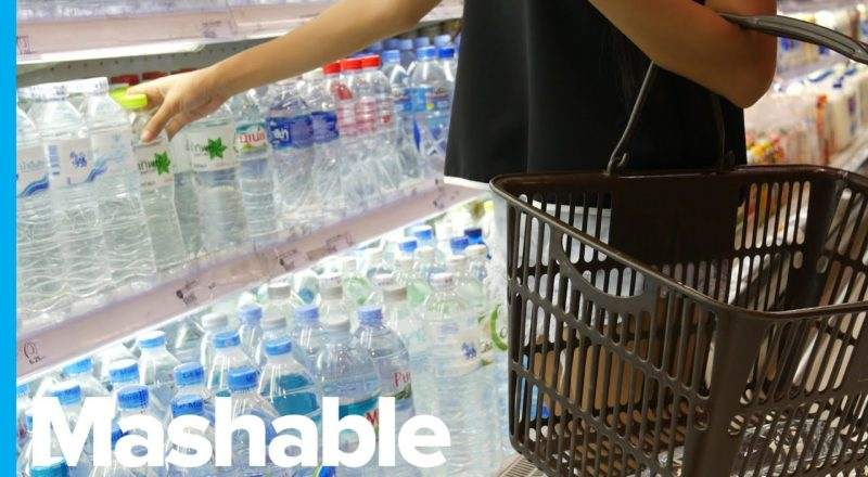 Scientists Make an Awesome Error That Could Save Our Planet from Plastic Hell