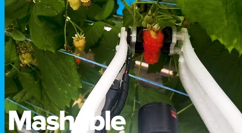Robot Farmer Will Be Able To Work 20 Hours a Day