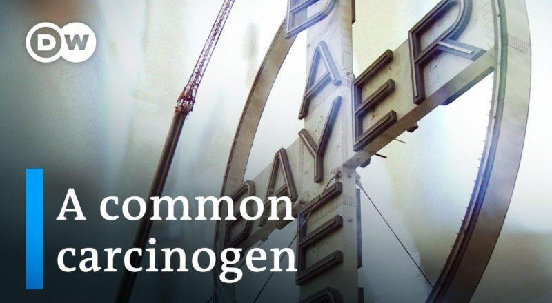 Turning toxic - The Bayer-Monsanto merger - Documentary
